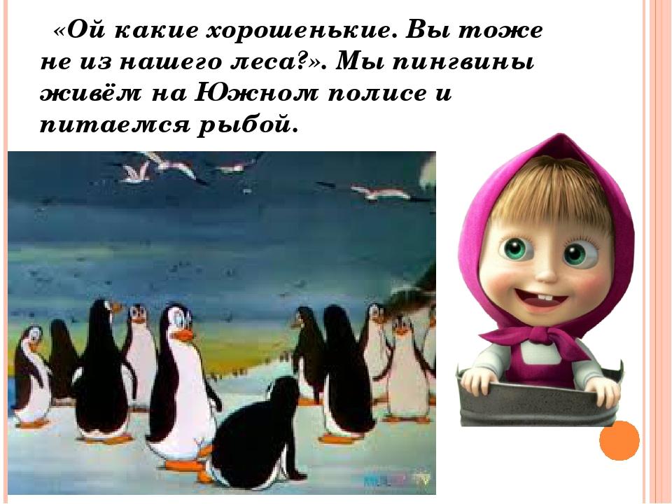 «Ой какие хорошенькие. Вы тоже не из нашего леса?». Мы пингвины живём на Южн...