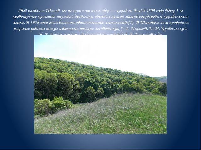 Своё название Шипов лес получил от англ. ship — корабль. Ещё в 1709 году Пётр...