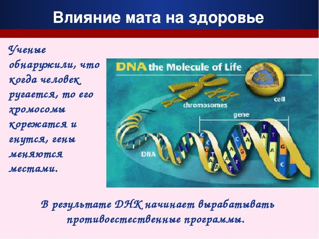 В результате ДНК начинает вырабатывать противоестественные программы. Влияние...