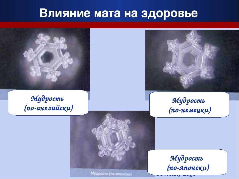 Company Logo Влияние мата на здоровье Мудрость (по-немецки) Мудрость (по-англ...