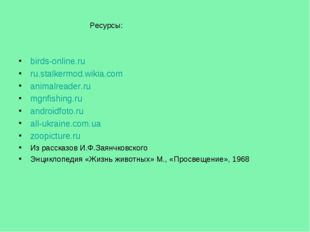 birds-online.ru ru.stalkermod.wikia.com animalreader.ru mgnfishing.ru android