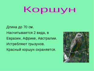 Длина до 70 см. Насчитывается 2 вида, в Евразии, Африке, Австралии. Истребляю