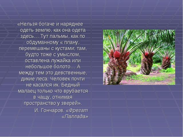«Нельзя богаче и наряднее одеть землю, как она одета здесь… Тут пальмы, как...