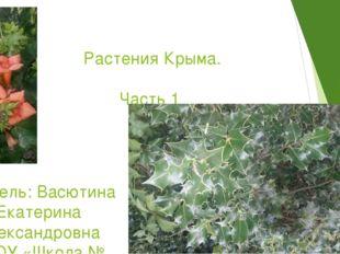 Растения Крыма. Часть 1 Учитель: Васютина Екатерина Александровна ГБОУ «Школ
