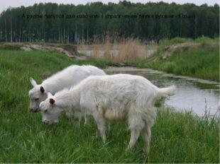 « А рядом пасутся две козочки» ( упражнение двумя руками «Коза»).