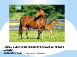 Рядом с домиком пробегала лошадка, громко цокала копытами она. (упражнение «