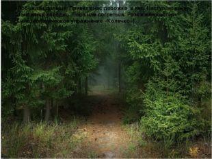 «Побежали дальше. Привела нас дорожка в лес. Наступает вечер. Становится хол