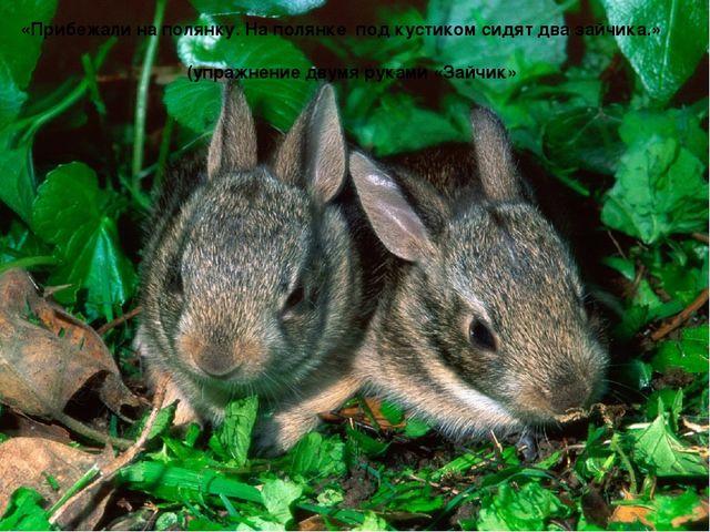«Прибежали на полянку. На полянке под кустиком сидят два зайчика.» (упражнен...