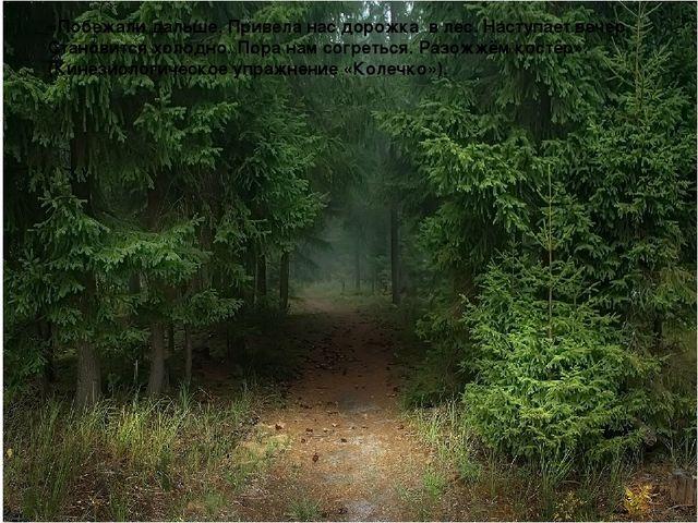 «Побежали дальше. Привела нас дорожка в лес. Наступает вечер. Становится хол...