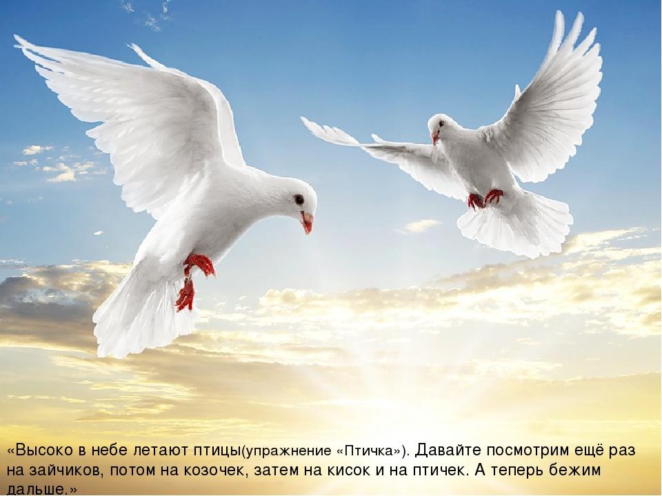«Высоко в небе летают птицы(упражнение «Птичка»). Давайте посмотрим ещё раз...