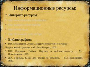 Информационные ресурсы: Интернет-ресурсы: http://www.bibliotekar.ru/rusShishk