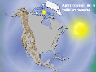 Арктикалық шөл табиғат зонасы