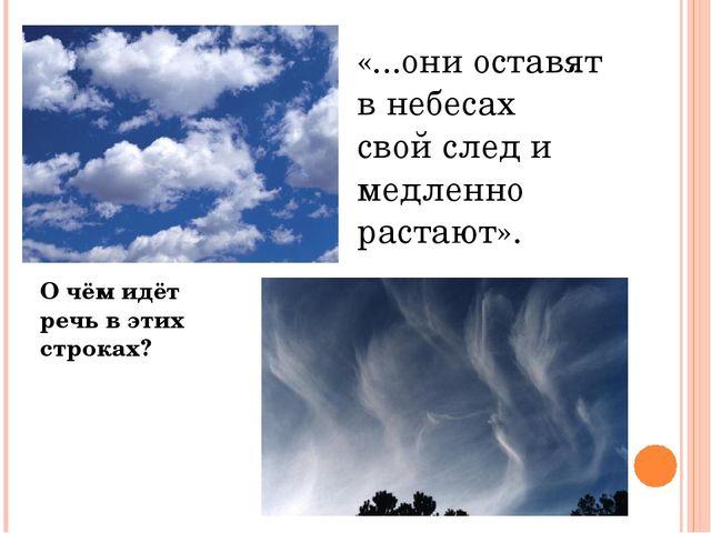«...они оставят в небесах свой след и медленно растают». О чём идёт речь в эт...