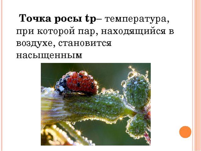 Точка росы tр– температура, при которой пар, находящийся в воздухе, становит...