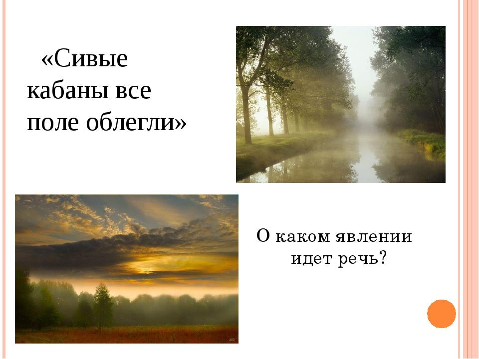 «Сивые кабаны все поле облегли» О каком явлении идет речь?