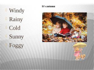 Windy Rainy Cold Sunny Foggy It's autumn