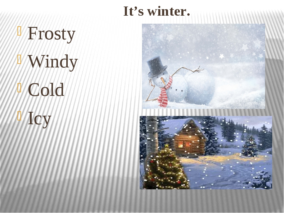 It's winter. Frosty Windy Cold Icy