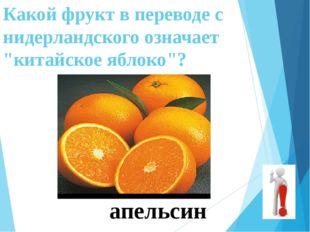 """Какой фрукт в переводе с нидерландского означает """"китайское яблоко""""? апельсин"""