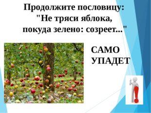 """Продолжите пословицу: """"Не тряси яблока, покуда зелено: созреет..."""" САМО УПАДЕТ"""