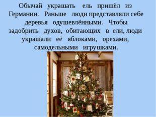 Обычай украшать ель пришёл из Германии. Раньше люди представляли себе деревья