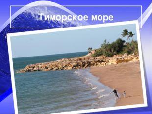 Тиморское море