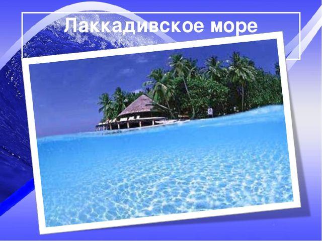 Лаккадивское море