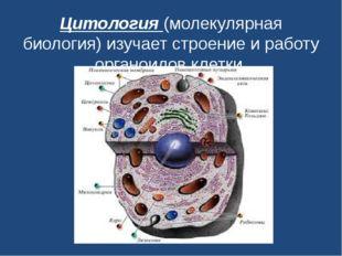 Цитология(молекулярная биология) изучает строение и работу органоидов клетки.