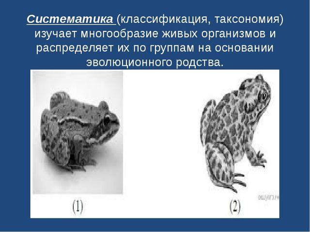 Систематика(классификация, таксономия) изучает многообразие живых организмов...