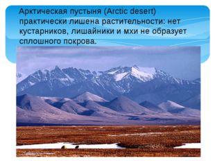 Арктическая пустыня (Arctic desert) практически лишена растительности: нет к