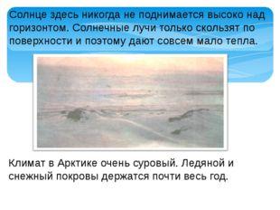 Климат в Арктике очень суровый. Ледяной и снежный покровы держатся почти весь