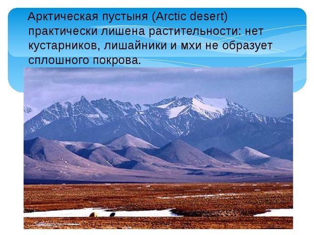 Арктическая пустыня (Arctic desert) практически лишена растительности: нет к...
