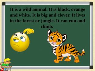 It is a wild animal. It is black, orange and white. It is big and clever. It