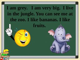 I am grey. I am very big. I live in the jungle. You can see me at the zoo. I