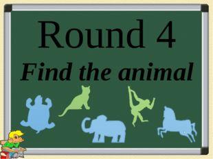 Round 4 Find the animal
