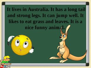 It lives in Australia. It has a long tail and strong legs. It can jump well.