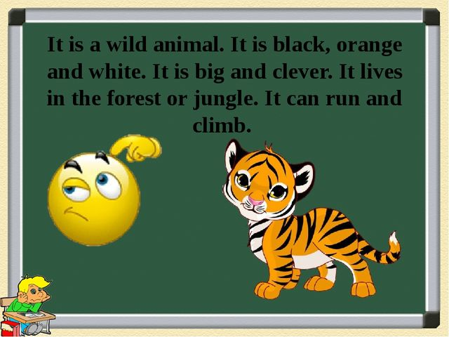 It is a wild animal. It is black, orange and white. It is big and clever. It...