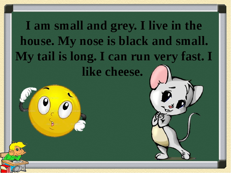 I am small and grey. I live in the house. My nose is black and small. My tail...