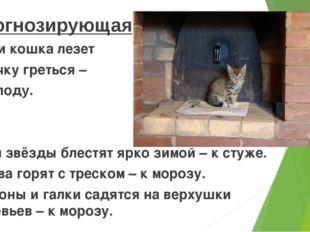 Прогнозирующая Если кошка лезет в печку греться – к холоду. Если звёзды блес