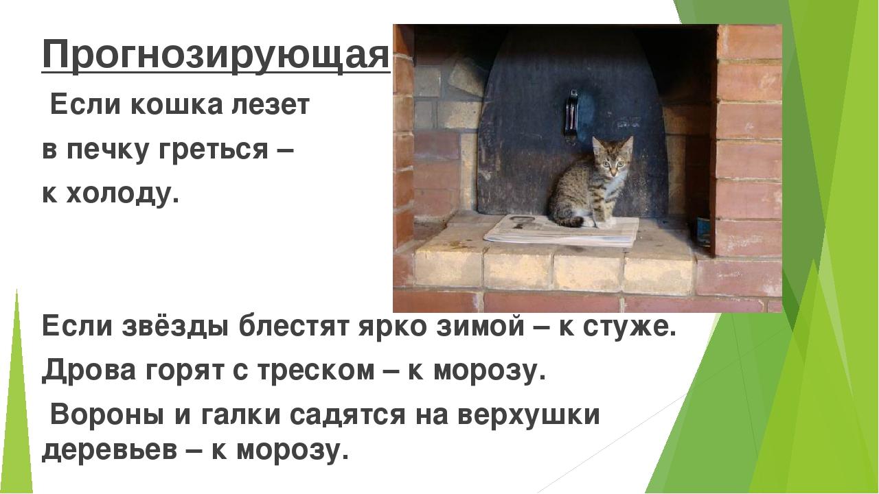 Прогнозирующая Если кошка лезет в печку греться – к холоду. Если звёзды блес...