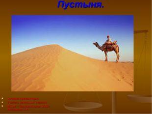 Пустыня. Создала презентацию Учитель начальных классов МКОУ «Чермошнянская ОО