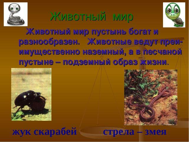 Животный мир Животный мир пустынь богат и разнообразен. Животные ведут преи-и...