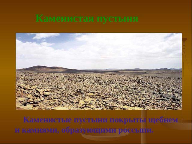 Каменистая пустыня Каменистые пустыни покрыты щебнем и камнями, образующими...