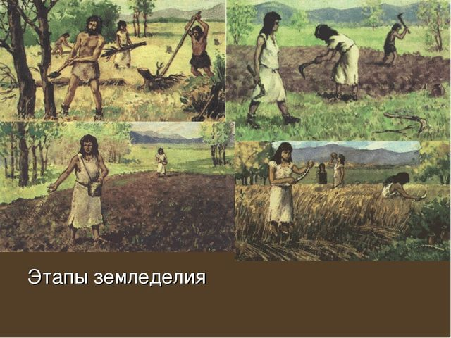 Этапы земледелия