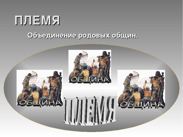 ПЛЕМЯ Объединение родовых общин.