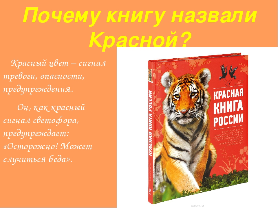 Почему красная книга называется красной