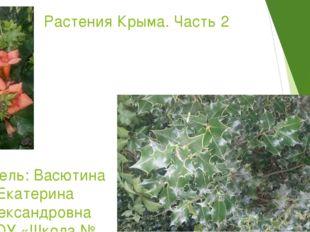 Растения Крыма. Часть 2 Учитель: Васютина Екатерина Александровна ГБОУ «Школ