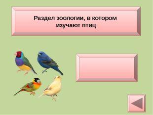 Ихтиология Раздел зоологии, в котором изучают рыб