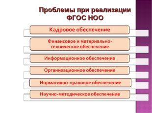 Проблемы при реализации ФГОС НОО