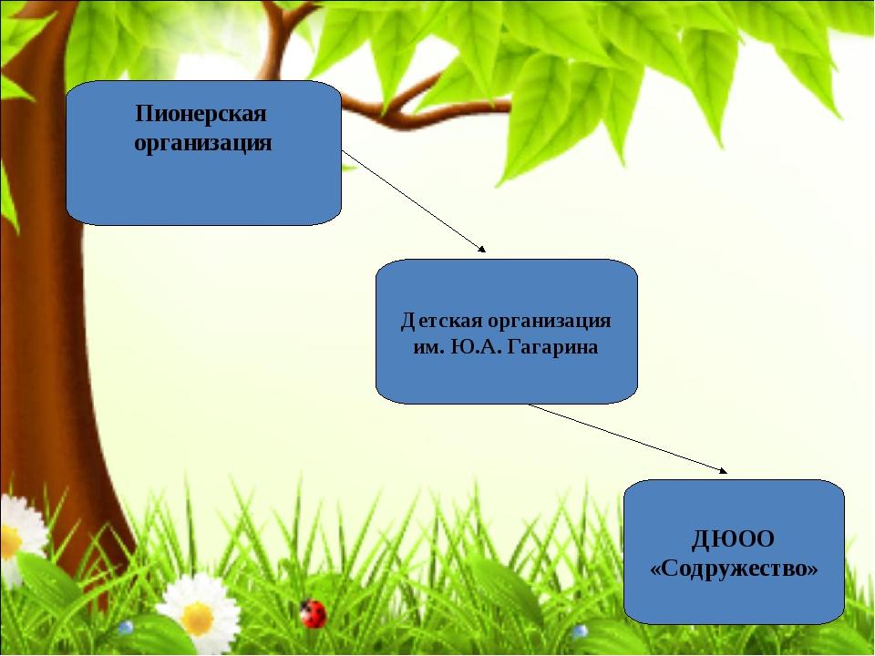Пионерская организация Детская организация им. Ю.А. Гагарина ДЮОО «Содружест...