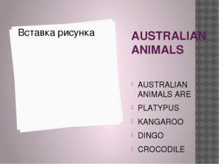 AUSTRALIAN ANIMALS AUSTRALIAN ANIMALS ARE PLATYPUS KANGAROO DINGO CROCODILE